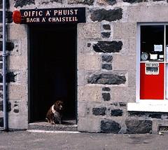 Oific a'Phuist (the44mantis) Tags: dog scotland postoffice escocia western calmac isles hebrides schottland schotland ecosse scozia aplusphoto