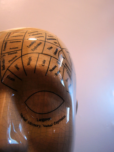 Fun with Phrenology