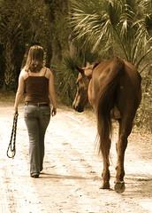 (sassyaae) Tags: friends woman girl field barn model farm trail bond equestrian whisperer