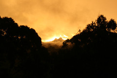 cougal sunset 5 (Cher (Ross and Cher)) Tags: sunset springbrook mtcougall