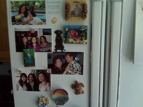 The refrigerator door