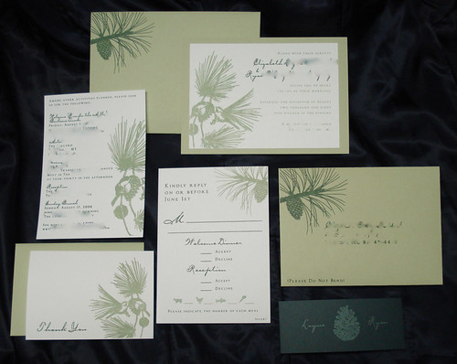 Wedding Invitations - Layne and Ryan, Wedding Invitations - Layne and Ryan, wedding cakes, flowers, invitation, photos, gowns, dresses