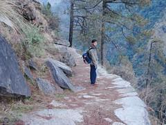The path to heaven 3 (asis k. chatt) Tags: india nature path naturephotography naturescene himalayantrek naturalharmony garwalhimalayas