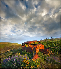 Forgot Something ? (kevin mcneal) Tags: light sunrise wildflowers oldcar washingtonstate columbiagorge lupine earlymorninglight arrowrootbalsam dalleshilles