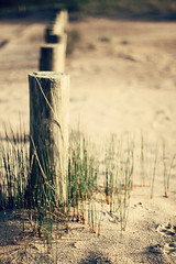 Beachy Fence Friday (MarianneLoMonaco) Tags: ontario canada beach grass spring dof wasaga bokeh sandy