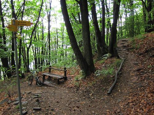 Ticino Trails