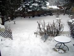 Backyard with snow