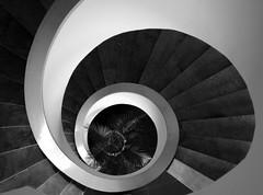 Caracol (Claudio Marcon) Tags: brazil blackandwhite bw brasil spiral artistic noiretblanc expression gray pb stairway staircase espiral caracol escadas escadaria fotoclube bnarchitettura artlegacy top20gray claudiomarcon explorewinnersoftheworld detallessculpturalandaechitecturaltreasures bauhausrendezvous