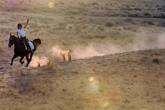 D2X6517 (Alkassim) Tags: horse nikon d2x saudi arabian dust riyadh farah ctr mywinners ultimateshot flickrdiamond alkassim ahmedalkassim
