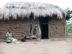 A typical house (Dennis Keller) Tags: africa roof house hot grass rural work village african farming soil adobe remote organic uganda agriculture development ari sustainability ugandan organicagriculture