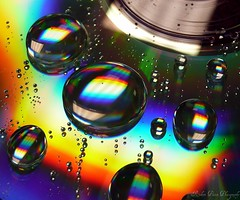 Cd Art (900+ faves) :-) (Robert~EOS~60D) Tags: blue red macro reflection green art water yellow droplets dvd drops amazing rainbow colours cd bubbles panasonic colourful disc 700 magical 25000 rainbowcolours abigfave theloveshack perfectangle views30000 tz3 colouricious platinumheartaward flickrslegend theperfectphotographer colorsplosion yourmacroworld