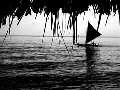 baroto (charlie1020) Tags: blue yellow sailboat baroto