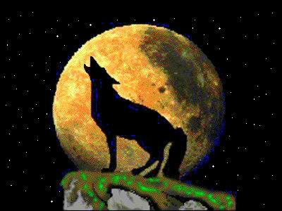 Wolf%20Warrior%20Logo