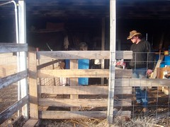 building a gate from scratch