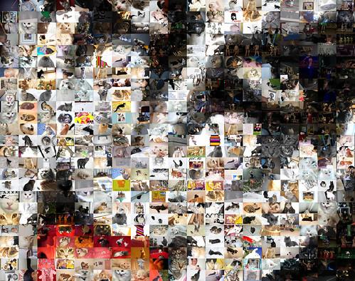 Mosaic: Gene Simmons