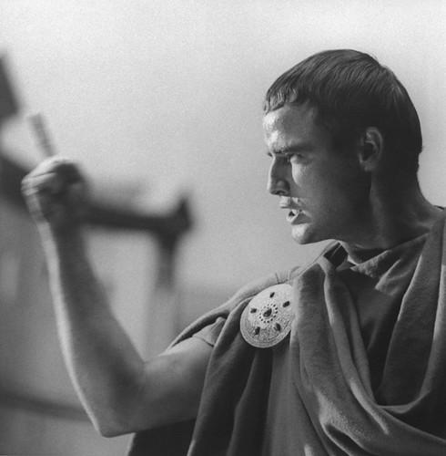 brutus from julius caesar. Calhern as Julius Caesar,
