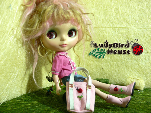 Blythe Pink Boots LadyBird VS Flower include Bag by ladybird house.