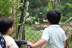 新竹市立動物園06