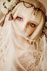 light as a feather (Sassy Strawberry) Tags: doll dolls bjd flapper dollfie superdollfie volks abjd temperance dollfies bjds schoola scha sassystrawberry dolpa dolpa19 kunpoorou evildolly