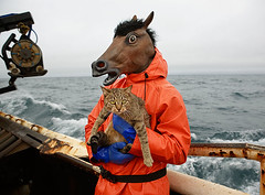 Kitty_and_Horse_Fisherman (coreyfishes) Tags: ocean sea snow color ice dutch weather animal alaska danger harbor photo fishing fisherman king arnold picture wave crab corey human catch kingcrab discovery harsh beringsea crabbing rollo bering snowcrab opilio deadliest deadliestcatch coreyfishes
