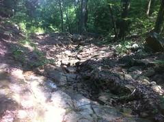 Chamberlain Trail Dry Creek Crossing