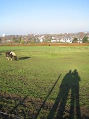 Op de Sint Pietersberg (boemlau) Tags: maastricht uitzicht 2007 sintpietersberg