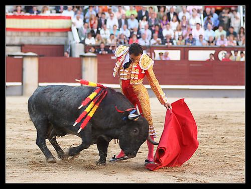 """""""El Cid"""" con un toro de Victorino"""