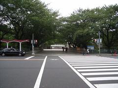 名古屋城 (3)