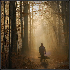 Walking The Dog (Soren Larsen) Tags: winter dog mist forest denmark atmosphere walkingthedog nikond200 risskov glodenglobe flickrlovers