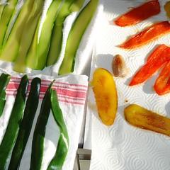 Gemüseterinne2_red2008_0400