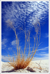 whitesands2 (Khushroo Ghadiali) Tags: new blue sky white canon mexico sandra mark nm sands balboa 40d 1on1photooftheweek paulda 1on1photooftheweekmarch2008
