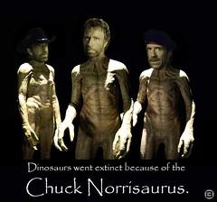 norrisaurus
