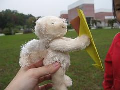 20080325-白熊也要玩-15