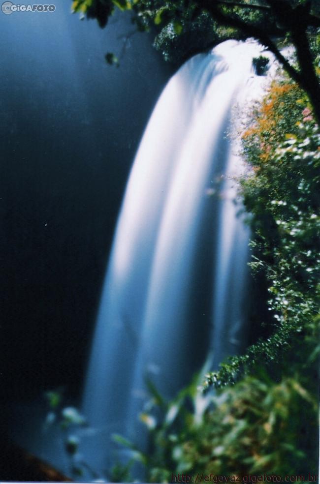 Araguari, a bela do Triângulo Mineiro 2471443229_d0ddc45852_o