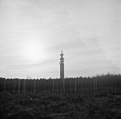 The post office tower (hollyjadephoto) Tags: blackandwhite film analogue 120mm mediumformat infraredfilm woods trees cannockchase midlands light layers