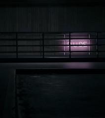 153/365 (lukerenoe) Tags: conceptual art lukerenoe light levitation city dark pink neon sign dude