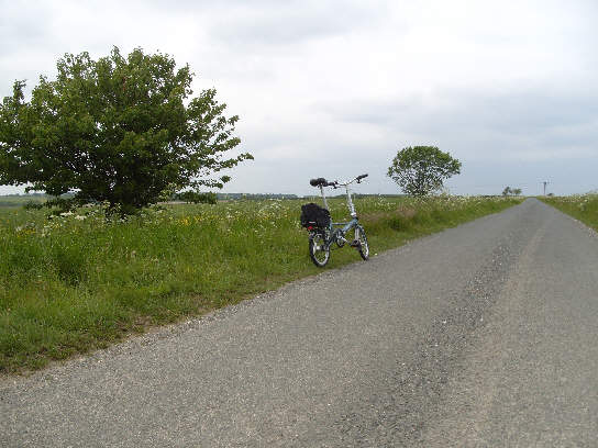 On the road between Burton Fleming and Thwing
