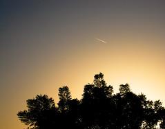 Shooting Star.. Make a wish ! (Daylebo) Tags: dubai uae jumeirah
