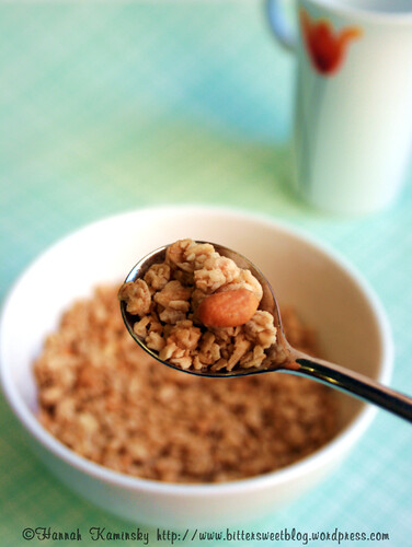 Nature's Path Peanut Butter Granola