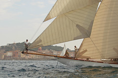 Tuiga in front of Saint-Tropez (mhobl) Tags: france frankreich sailing photographer excellent regatta awards 2007 sainttropez mywinners excellentphotographerawards tuigad3