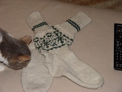 eesti trail socks