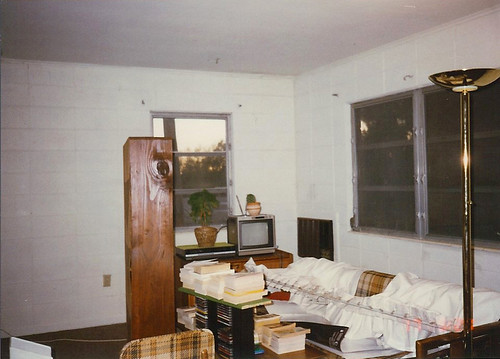 Past Perfect--my Jeffwood apartment, during the painting
