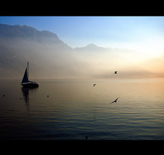 Sail at sunset (Vesuviano - Nicola De Pisapia) Tags: sunset italy lake mountains bird birds sailboat montagne lago garda italia tramonto sailing sail vela gabbiani gabbiano themoulinrouge eow supershot mywinners vesuviano betterthangood