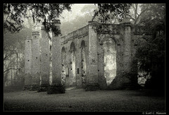 Old Sheldon Church (Sco C. Hansen) Tags: wedding sc blackwhite oak ruins southcarolina spanishmoss beaufort soe sheldon lowcountry blueribbonwinner yemassee oldsheldonchurch beaufortcounty beaufortsc scotthansen aplusphoto