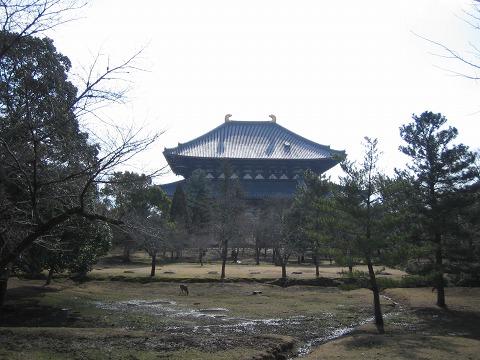 東大寺「講堂跡」