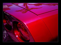 A Very Sweet Booty (Jerri Johnson (away)) Tags: red reflection tree chevrolet car lights nikon paint artistic expression rear vivid palm explore booty brake d200 corvette rearend 2007 artisticexpression golddragon mywinners abigfave betterthangood goldstaraward dragongold happyfridayflickrfriends