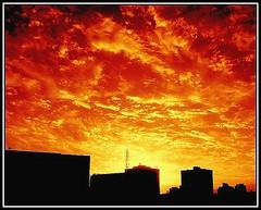 Autumn  (~ Seba ~) Tags: chile autumn santiago sunset sky sepia clouds atardecer spider bravo cielo nubes otoo sephia tones soe seba sebastin themoulinrouge firstquality supershot artedechile 35faves abigfave artechileno anawesomeshot aplusphoto superbmasterpiece favemegroup4 megashot theunforgettablepictures colourartaward thegardenofzen theroadtoheaven thegoldendreams thegoldproject fotografachilena fotgrafoschilenos