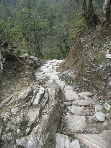 We probably ascended/descended 20,000 stone steps during the trek