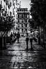 ¿Eres gato gato?, Madrid (Channz) Tags: madrid spain bw thetraveler thetraveller street europe streetphotos people monochrome blackandwhite channyca canadian rain wet building streetsign canon 5d 5dmarkiii 24105 lglass postcard summer 2016 gato gatogato