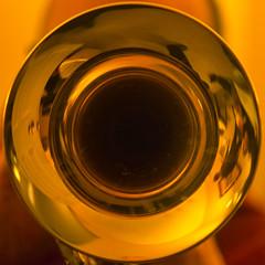 The Trumpeter (Timothy Valentine) Tags: 0217 2017 squaredcircle brass family music home sliderssunday eastbridgewater massachusetts unitedstates us